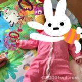 【0歳5ヶ月】赤ちゃん連れ一時帰国の記録 4(実家滞在編)